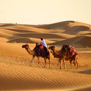 Pacote Dubai e Deserto